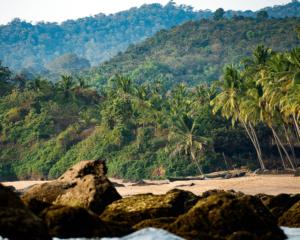 strand kerala indien